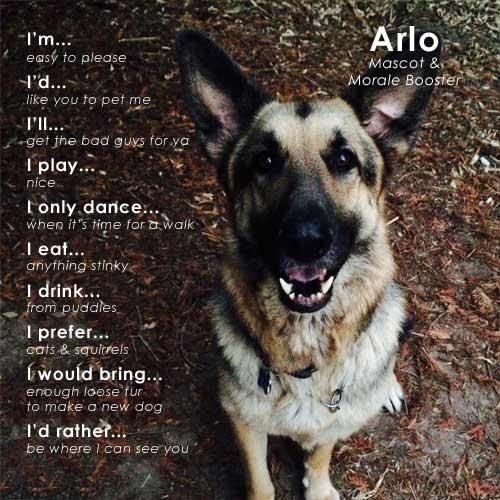 Arlo, Local Plumbers Asheville Best Friend