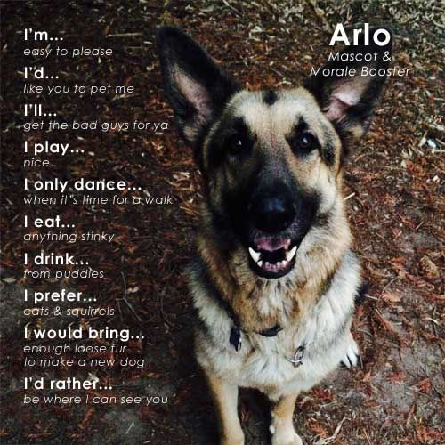 Arlo, Local Plumbers Asheville Best Friend